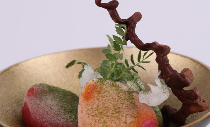 Fakir Bowl - Koppert Cress introduces Hummus Leaves