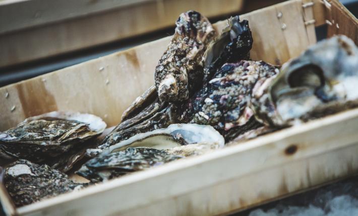 Visrestaurant Pesca
